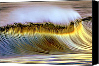 Outdoors Pyrography Canvas Prints - The Wave Canvas Print by Zarija Pavikevik