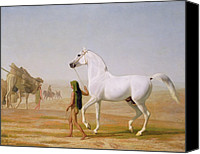Grey Clouds Painting Canvas Prints - The Wellesley Grey Arabian led through the Desert Canvas Print by Jacques-Laurent Agasse