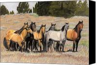 Wild Horse Pastels Canvas Prints - The Wild Bunch Canvas Print by Nichole Taylor