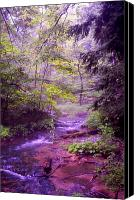Creek Bed Canvas Prints - The wonder of nature Canvas Print by John Stuart Webbstock