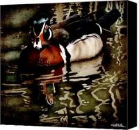 Waterfowl Canvas Prints - The woodsman... Canvas Print by Will Bullas