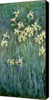 Monet Painting Canvas Prints - The Yellow Irises Canvas Print by Claude Monet