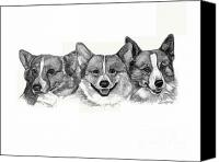 Corgies Canvas Prints - Three Corgies Canvas Print by Deb Gardner