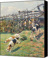 Beagle Canvas Prints - Through the Fence Canvas Print by Arthur Charles Dodd