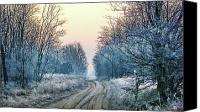 Hungary Canvas Prints - Through the Woods Canvas Print by Mimulux patricia no