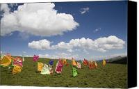 Tibetan Buddhism Canvas Prints - Tibetan Prayer Flags In A Field Canvas Print by David Evans
