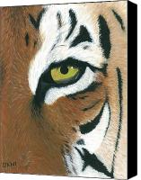 Tiger Canvas Prints - Tiger Canvas Print by Dani Moore
