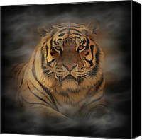 Indiana Canvas Prints - Tiger Canvas Print by Sandy Keeton