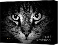 Stripped Cat Canvas Prints - Tiger Tiger 2 Canvas Print by Dale   Ford