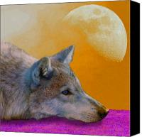 Wolf Canvas Prints - Timber Wolf Under the Moon Canvas Print by Tina B Hamilton