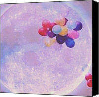 Teg Canvas Prints - To The Moon Canvas Print by Casi Wonderland