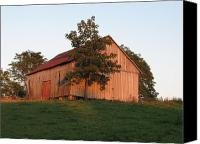 Farming Barns Canvas Prints - Tobacco Barn II in color Canvas Print by JD Grimes