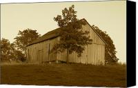 Farming Barns Canvas Prints - Tobacco Barn II in Sepia Canvas Print by JD Grimes