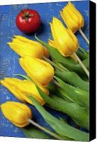 Things Canvas Prints - Tomato and tulips Canvas Print by Garry Gay