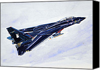 Airplane Painting Canvas Prints - Tomcat Playboy Canvas Print by Mark Jennings