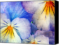 Gentle Canvas Prints - Tones of Blue Canvas Print by Darren Fisher