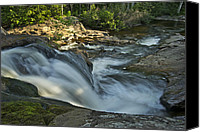 Michigan Waterfalls Canvas Prints - Top of the Dog 4191 Canvas Print by Michael Peychich