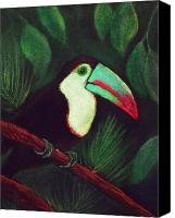 Forest Pastels Canvas Prints - Toucan Canvas Print by Anastasiya Malakhova
