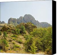 Big Bend Canvas Prints - Tough Country in Bing Bend Canvas Print by M K  Miller