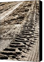 Tractor Wheel Canvas Prints - Tractor Tracks in Dry Mud Canvas Print by Olivier Le Queinec