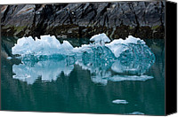 Whalen Photography Canvas Prints - Tracy Arm Fjord Ice Two Canvas Print by Josh Whalen
