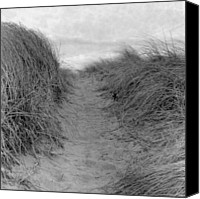 Dirt Road Canvas Prints - Trail Through The Sand Dunes Canvas Print by Daniel J. Grenier