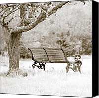 Park Benches Canvas Prints - Tranquility Canvas Print by Frank Tschakert