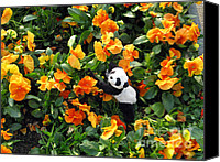 Baby Panda Canvas Prints - Traveling Pandas. Ginny in the Orange Sea of Pansies. Canvas Print by Ausra Paulauskaite