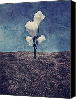Textured Canvas Prints - Tree Clouds 01d2 Canvas Print by Aimelle