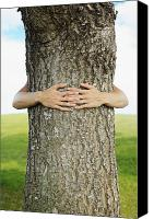 Brandon Tabiolo Canvas Prints - Tree Hugger 1 Canvas Print by Brandon Tabiolo - Printscapes