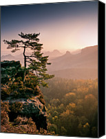 Mountain Scene Canvas Prints - Tree In Morning Llght In Saxon Switzerland Canvas Print by Andreas Wonisch