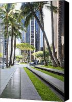 Honolulu Photo Canvas Prints - Tree-lined sidewalk, island of Oahu, HI, USA Canvas Print by Inti St. Clair