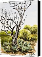 Grass Drawings Canvas Prints - Tree Painting Canvas Print by Svetlana Sewell