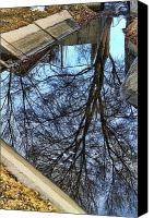 Buy Framed Prints Canvas Prints - Tree Reflection From No Where Photography Image Canvas Print by James Bo Insogna