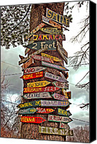 New Hampshire Canvas Prints - Tree Signs Canvas Print by Joann Vitali