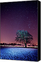 Solitude Canvas Prints - Tree Snow And Stars Canvas Print by Paul McGee