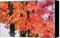 Autumn Canvas Prints - Trees Aflame Canvas Print by Jeff Kolker