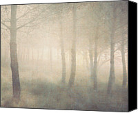 "\""painterly Photography\\\"" Photo Canvas Prints - Trees In Mist On Linen Canvas Print by Paul Grand Image"
