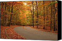 Autumn Photographs Canvas Prints - Trees Of Autumn - Holmdel Park Canvas Print by Angie McKenzie
