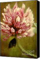Textured Floral Canvas Prints - Trefle en Solo Canvas Print by Variance Collections