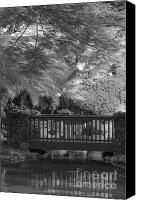 On-the-look-out Canvas Prints - Tropical Bridge in BW Canvas Print by Darcy Michaelchuk