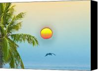 Tropical Sunset Canvas Prints - Tropical Sun Canvas Print by Bill Cannon