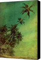 Cloud Digital Art Canvas Prints - Tropical Vestige Canvas Print by Andrew Paranavitana