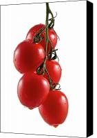 Tomatoes Tapestries Textiles Canvas Prints - Truss Canvas Print by Gert Lavsen