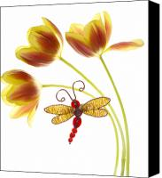 Dragonfly Canvas Prints - Tulip Dragonfly Canvas Print by Rebecca Cozart