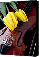 Tulips Canvas Prints - Tulips and Violin Canvas Print by Garry Gay