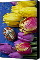 Bold Canvas Prints - Tulips with Easter egg Canvas Print by Garry Gay
