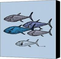 Swim Drawings Canvas Prints - Tuna School Of Fish Canvas Print by Karl Addison