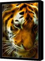 Abstract Cat Portrait Canvas Prints - Turbulent Tiger Canvas Print by Ricky Barnard