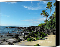 Hawaii Beach Art Canvas Prints - Turtle Beach Oahu Hawaii Canvas Print by Rebecca Margraf